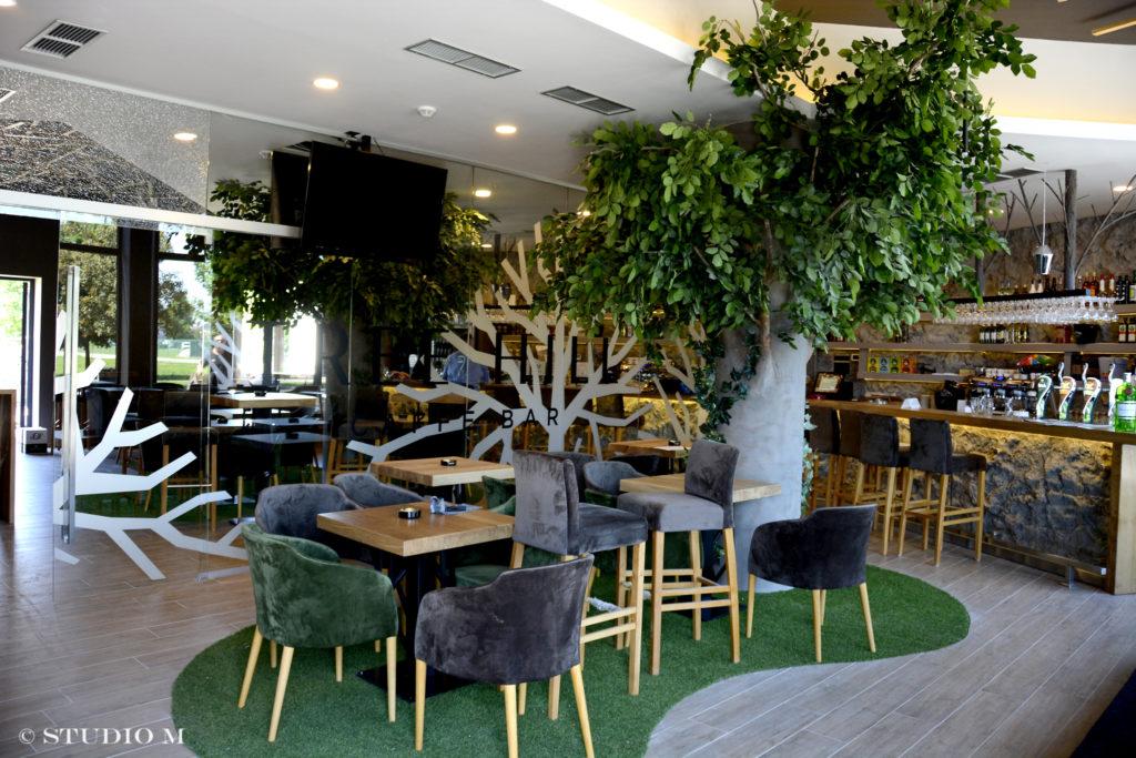 Tree Hill caffe bar